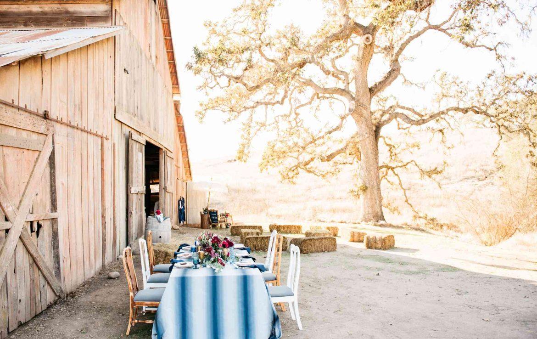 Dinner outside Barn