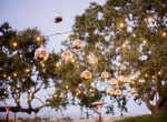 GaineyVineyard_WillaKveta_Lights