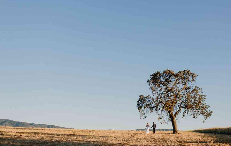 Gainey Tree