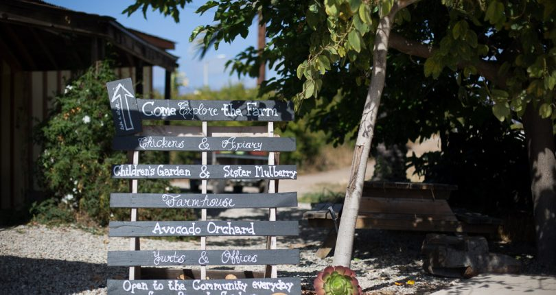 Farmstand Signage