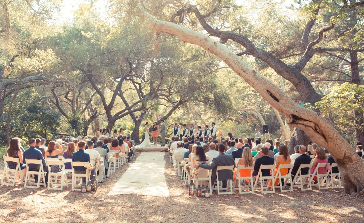 Sunkissed Ceremony under the Trees