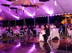 poloclub_willakveta_night