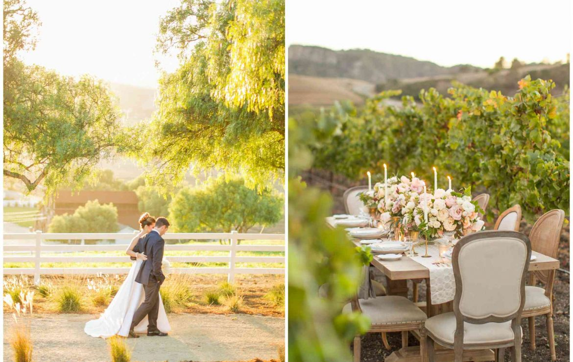 Lush Dining in the Vineyard