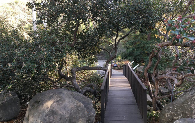 Wooden Bridge Walkway at Historical Museum