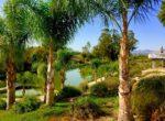 LakeStarRanch_view